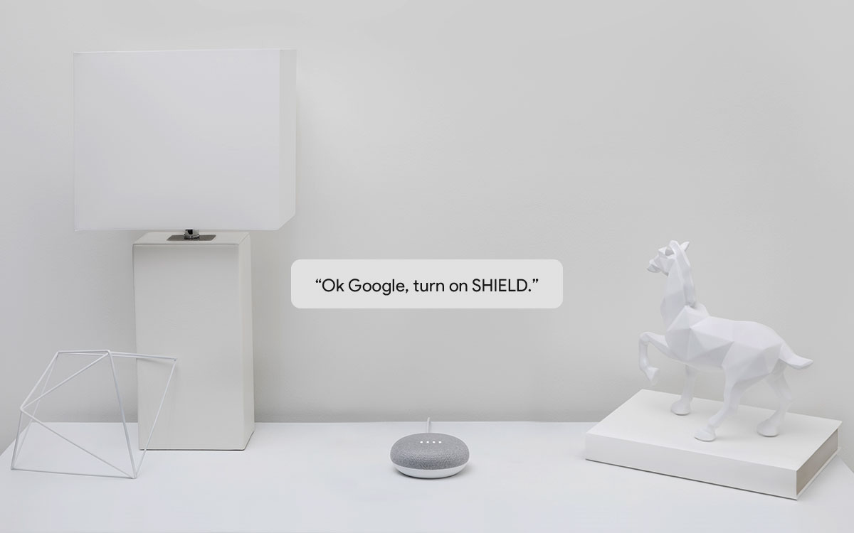 Google Assistant Enabled
